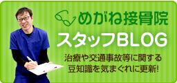 坂戸市めがね接骨院のスタッフブログ